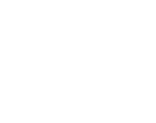 Logo Puravida Flores