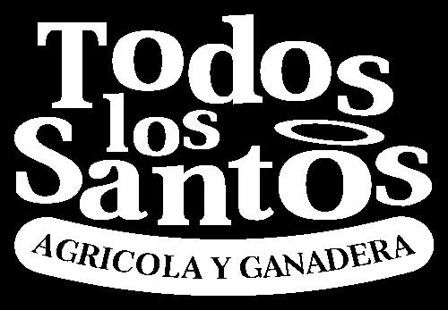 Logo Todos los Santos