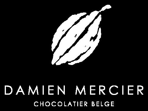 Logo Damien Mercier