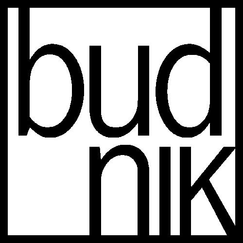 Logo Budnik