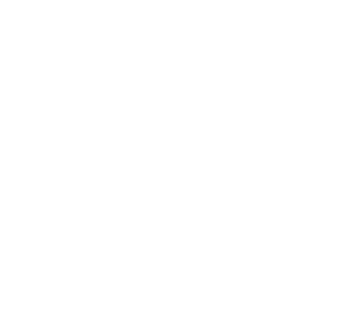 Logo Bozzo chocolates