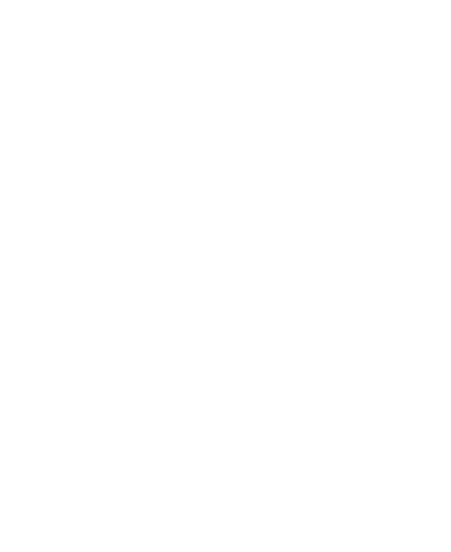 Logo The Big Carrot