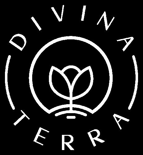 Logo Divina Terra Pinheiros