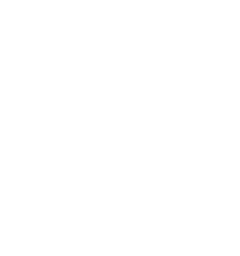 Logo Patagon Wines