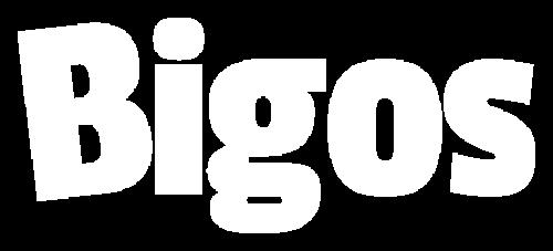 Logo Bigos