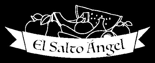 Logo El salto ángel