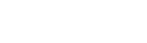 Logo Wild monkey