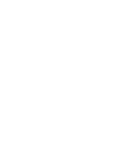 Logo PLAZ